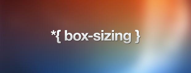 BOX SIZING PIC